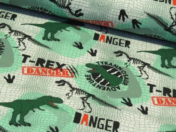 "FVJ Sommersweat ""Dino"" grün/grau"