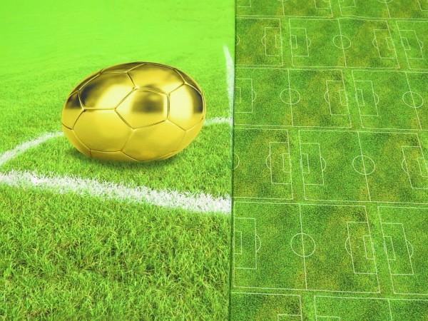 "Baumwolljersey Panel ""Fußball"" grün"