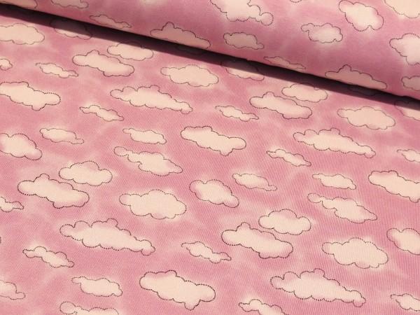 """Baumwolljersey Mini Winter """"Wolken"""" lilac"""