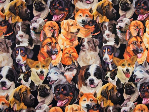 "Baumwolljersey ""Hunde"" schwarz-braun"