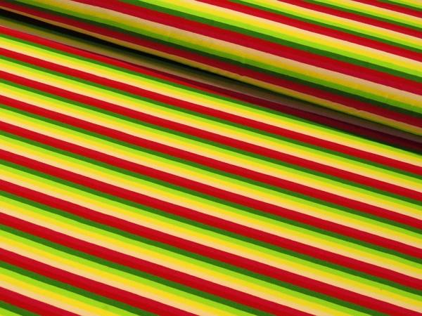 "Baumwolljersey ""Multistripes"" grün-rosa-rot"